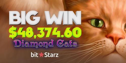 bitstarz casino big winner diamond cats slot