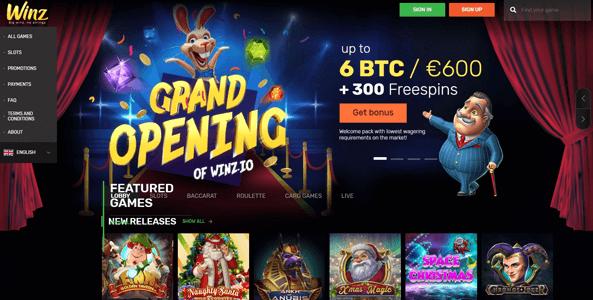 winz casino logo website preview
