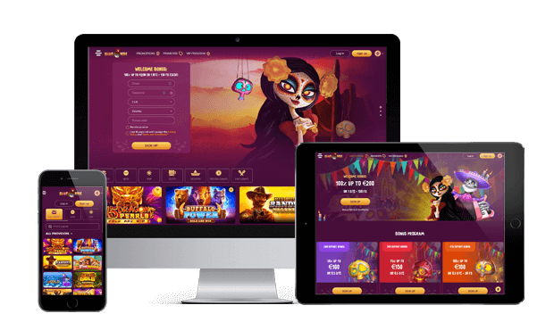 slotvibe casino website screens