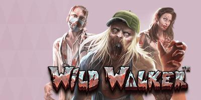 maria kasiino wild walker
